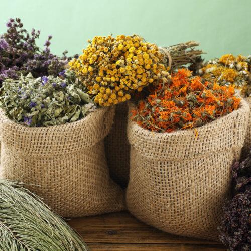 Kräuter & Blüten