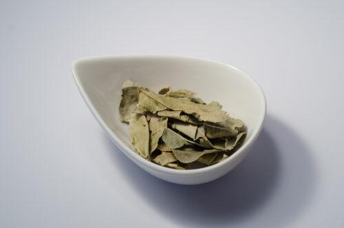 Kaffir-Limettenblätter